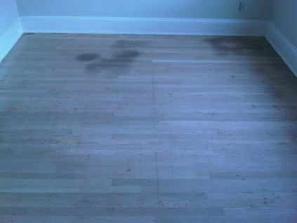Severe pet stains in hardwood floor